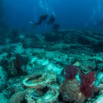 Photo de Red Sea Diving College