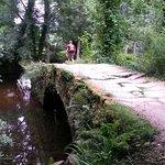 Photo of Camino de Santiago