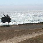 Cavalier Oceanfront Resort Foto