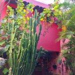 Foto de Casa de Las Flores