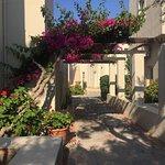 Foto de Ourania Apartments & Hotel