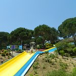 Foto di Water World