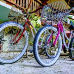 complementary bikes