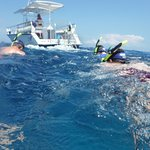 Getting pulled by the boat; great way to move through the water and see a lot below the waves!