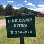 Line camp, sites with no trees and with trees