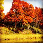 The beautiful Humber river is great for walking and biking along the paths