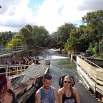 Photo of Busch Gardens Tampa