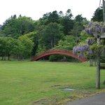 Nenohi Park Foto