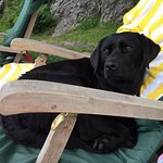 Müde vom Schwimmen und relaxen am Liegestuhl