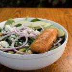 Kosher Salmon Spinach Salad with Apple & Avocado Slices.