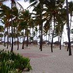 Catalonia Bavaro Beach, Casino & Golf Resort Foto