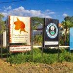 Roy Safaris Office