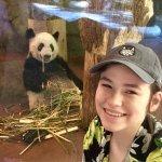Foto de Memphis Zoo