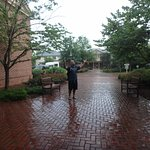 Hotel grounds, warm rain storm