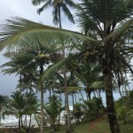 Photo de Havaizinho Beach