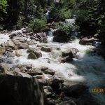 Water rushing down the creek