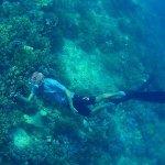 snorkeling gili layar
