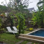 Gardens and plunge pool