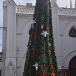 Decorated on occasion of Christmas