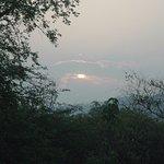Sunrise in jungle.