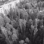 A street in Pripyat overgrown with trees. Taken from a 16 stories building.