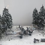 Blenheim-asetelma
