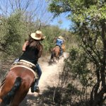 Cantering thru the mesquite trees and cacti!