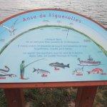 Photo of Parc de Figuerolles
