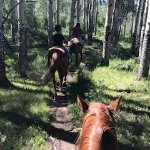 Riding through the trees.