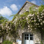The Burren Perfumery Tearooms, Creams Room and Soap Room