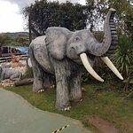 Photo of Elephant Wall (Morro do Elefante)