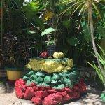 Rock in garden at Marley museum