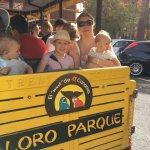 Loro Parque Foto