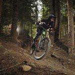 Whistler Mountain Bike Park Foto