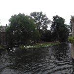 les petits canots qui sillonnent les canaux de Bruges