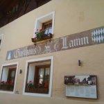 Lamm Foto