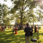 Live Music and Hang Out | Fifer Orchards