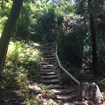 stairs down to redwoods...there is also an easier way down, but these are so quaint