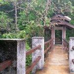 Photo of Penang National Park (Taman Negara Pulau Pinang)