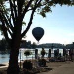 Schön am Rhein gelegen,tolle Fischküche!