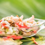 Our beachfront Cevicheria is #1 in Lonely Planet! Check out LocosCocos!