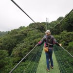 Walking on one of the sky bridges above the rain forest