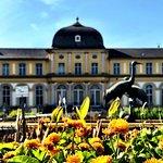 Photo of Botanische Garten der Universitat Bonn