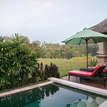 Private Pool overlooking rice field