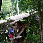 One of the traditional longhouse of one of the ethnic tribes in the interior of Sabah
