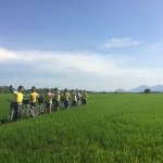 Sinhbalo team in a rice paddy near TraSu - ChauDoc. Mekong delta cycling trip