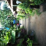 Kerala Bamboo House Foto