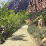 Zion's Main Canyon - Virgin River (2)