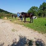 Horseback riding at Bike Check Inn