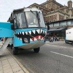 Ocean Bus-bild